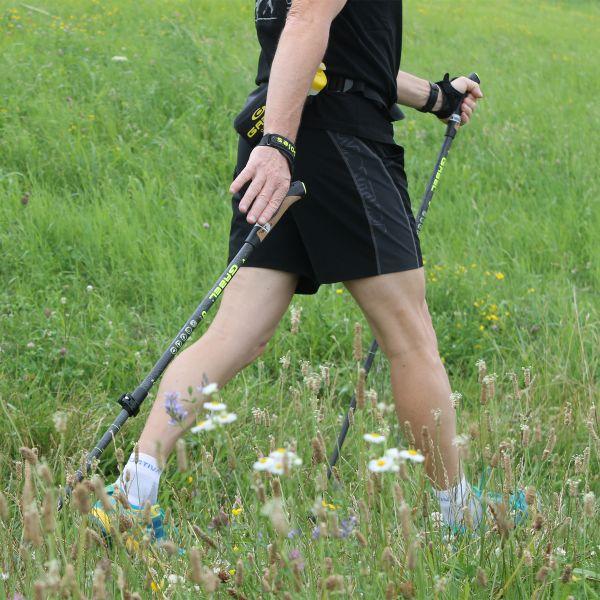 Палки для скандинавской ходьбы Gabel E-Poles G-1A XTL (7008370210000)
